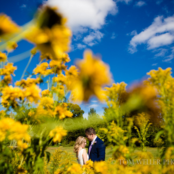 Wiltshire wedding photography - Ellie & Robin preview